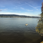 Osteopathie am Zürichsee